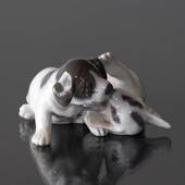 Pointer Welpen, Royal Copenhagen Hundefigur Nr. 453