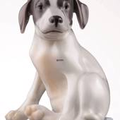 Pointer Welpe, Royal Copenhagen Hund Figur